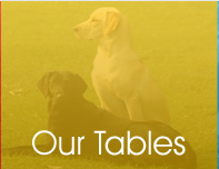Our Vet Tables